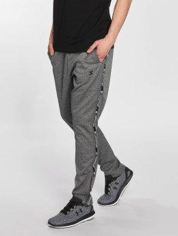 Starter Pantalone ginnico Maxwell grigio