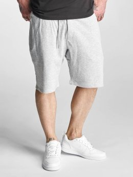 Supra Short Spar gris