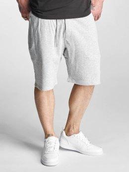 Supra Shorts Spar grau