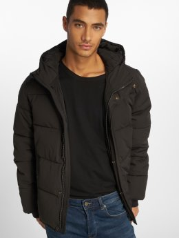Vintage Industries Chaqueta de invierno Lewiston negro