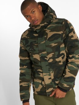 Vintage Industries Winterjacke  Lewiston camouflage