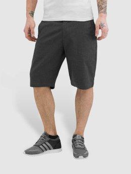 Volcom Shorts Frickin Modern Stretch grå