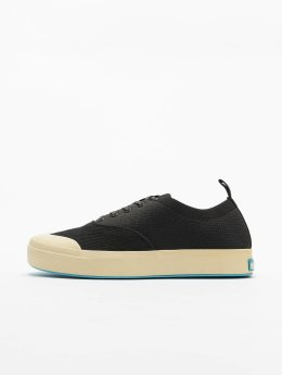 Native Sneaker Jefferson Plimsoll schwarz