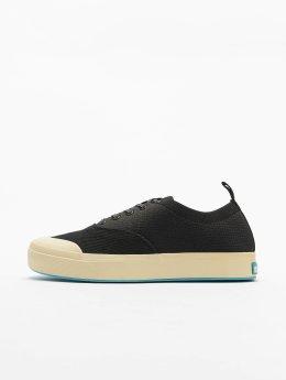 Native Sneakers Jefferson Plimsoll black