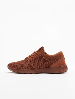 Supra Baskets Hammer Run brun