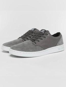 Supra Baskets Chino gris