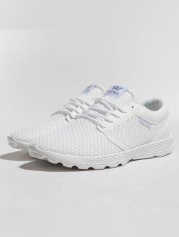 Supra Sneaker Hammer bianco