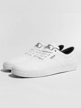 Supra sneaker Cobalt wit