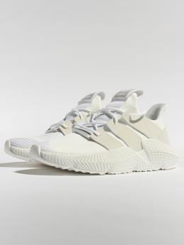 adidas originals Sneaker Prophere weiß