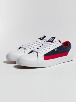 DC / sneaker Lynnfield in wit