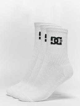 DC Socken 3-Pack Spp Crew weiß
