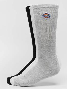 Dickies Ponožky Valley Grove 3 Pack biela