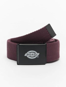 Dickies riem Orcutt rood