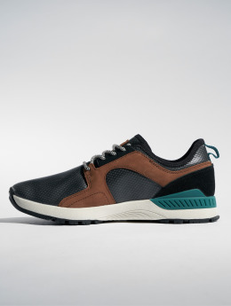 Etnies Sneakers Cyprus SCW svart