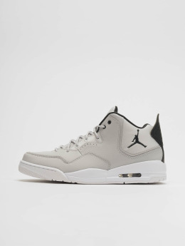 Jordan Sneaker Courtside 23 grigio