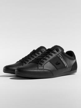Lacoste Sneaker Chaymon 318 5 Us Cam schwarz