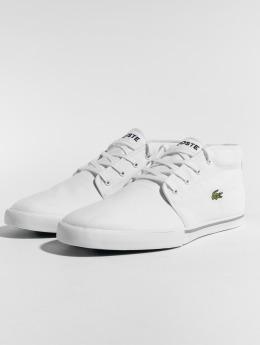 Lacoste Sneaker Ampthill LCR2 SPM weiß