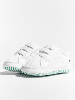 Lacoste Sneaker L.12.12 Crib 318 1 Cab weiß