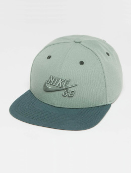 Nike SB Snapback Cap Icon grün