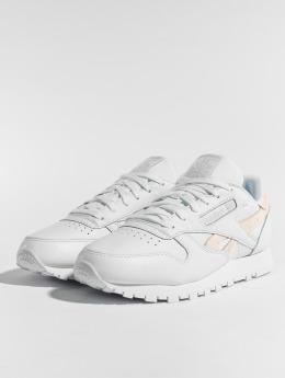 Reebok Sneaker CL LTHR bianco