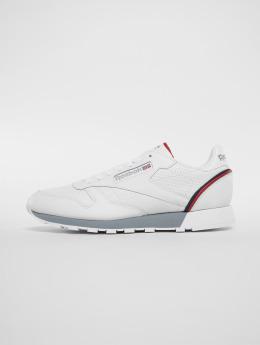 Reebok Sneakers Cl Leather Mu hvid