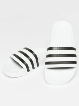 adidas originals | Stripy blanc Homme,Femme Claquettes & Sandales
