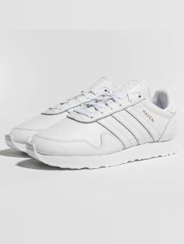 adidas Haven Sneakers Footwear White/Footwear White/Copper Flat