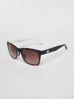 adidas originals Sunglasses Havana Brown/White