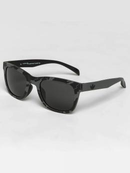 adidas originals Sunglasses Havana Grey/Grey
