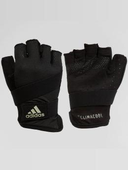 adidas Performance Sports Gloves Performance Wom Ccool black