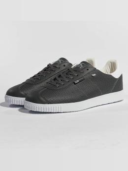 British Knights Sneakers Point šedá