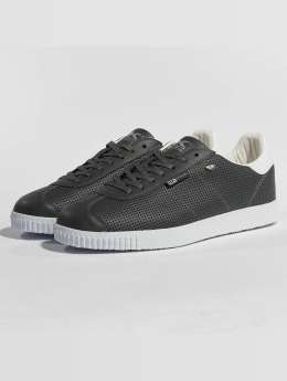 British Knights Sneakers Point gray