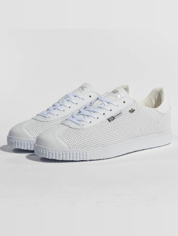 British Knights Sneakers Point hvid