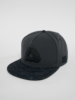 Cayler & Sons Casquette Snapback & Strapback Wl Dynasty Plated gris
