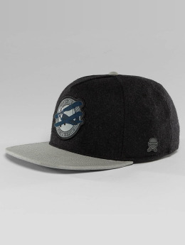 Cayler & Sons Snapback Cap Classic In Flight grau