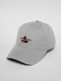 Cayler & Sons snapback cap C&s Wl Drop Out Curved grijs