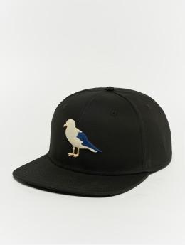 Cleptomanicx Snapback Cap Gull2 schwarz