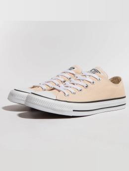 Converse Sneaker CTAS Ox braun