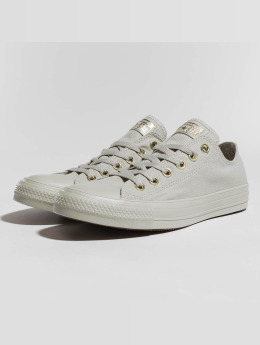 Converse Sneaker Taylor All Star Ox grau
