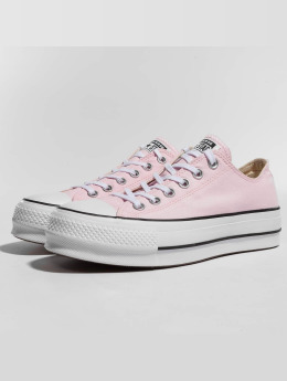Converse Sneaker CTAS Lift Ox rosa