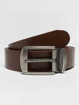 DC Belt Locked Bird brown