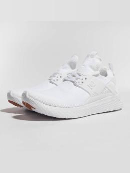 DC Sneaker Meridian weiß