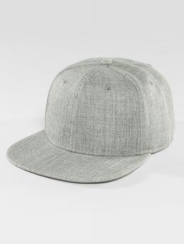 DEF Snapback Caps Basic szary