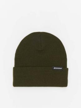 Dickies шляпа Alaska зеленый