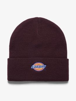 Dickies шляпа Colfax красный