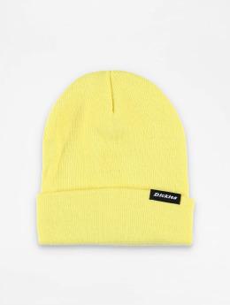 Dickies Beanie Alaska giallo