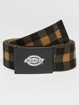 Dickies Belt Scottville  brown