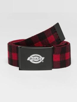 Dickies Belt Scottville  red