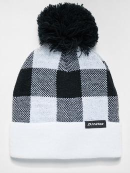 Dickies Bonnet hiver Shawsville blanc