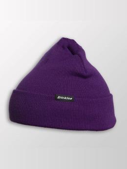 Dickies Bonnet Alaska pourpre